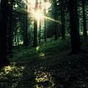 chcem twilight les!:((