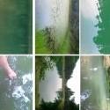 záznam z dnešného dojmového rozboru vody v rôznych tajchoch!