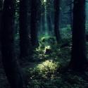 chcela som Twilight les:/:DDDD