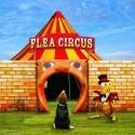 blsi cirkus