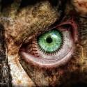 zasite oko