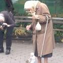 babka krmi babkou vevericku