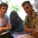 kamos a nejake 2 opice