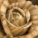 papierove lupene