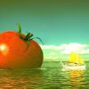 plavajuca paradajka