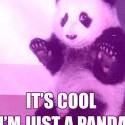 ja nic, ja panda