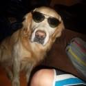 Pane pse! :)