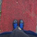 Konečne na červenom koberci...Veď tam sa nedostanete len tak..Raz za život,stojím na ňom a už to musím odfotiť :)  Ratátátátá :)