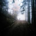 Zombie in the forest (moja naj BDFGBFDFG na svete♥) nevystraší ma ani za nič!:D