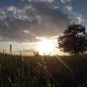 Milujem takéto fotky prírody :))