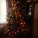 Tento rok sme mali tak veľký stromček, že sa nemestil na fotku. 2,5 metra *_*