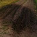už nejesto žiadne fotografie z trenčianskeho verejného wc, ale jesto táto fotografia fľaku na poľnej ceste